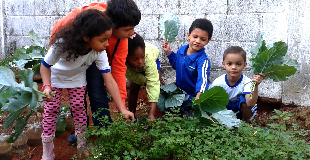 Crianças Saudáveis Goiânia
