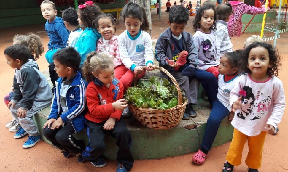 'Dia de Salada' no Centro Municipal de Educação Infantil Algodão Doce