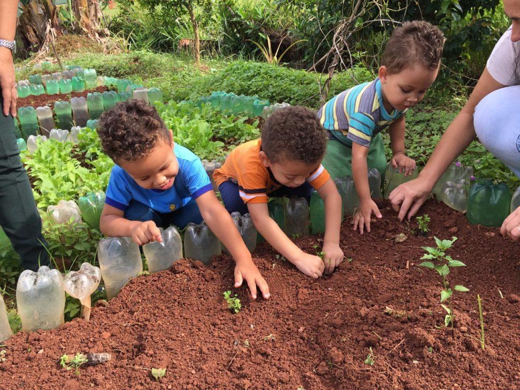 Crianças na horta escolar em Cambará