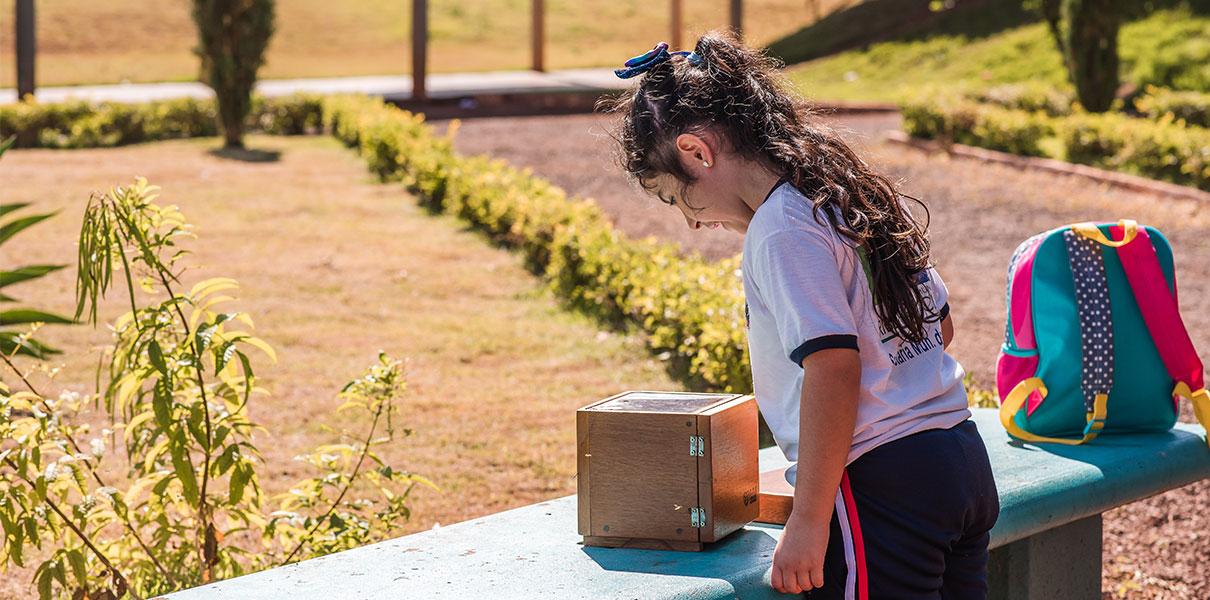Melhores Dias e General Mills lançam cartilha sobre abelhas nativas e inauguram meliponários em escolas do Paraná
